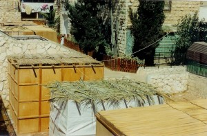 Sukkah Roofs - Thatched huts in Jerusalem