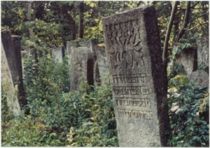 Certain Jewish communities would copy every name from the tombstones in the cemetery, and when the government came to town looking for people, they would tell the officials the person they wanted was dead. Then they would take them to the cemetery to prove it. In one town, everybody was dead. The next town over had tombstones without graves.